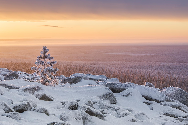 Ylläs lähtee tukemaan ilmastonmuutoksen vastaista työtä ja aloittaa yhteistyön Protect Our Winters Finlandin kanssa.