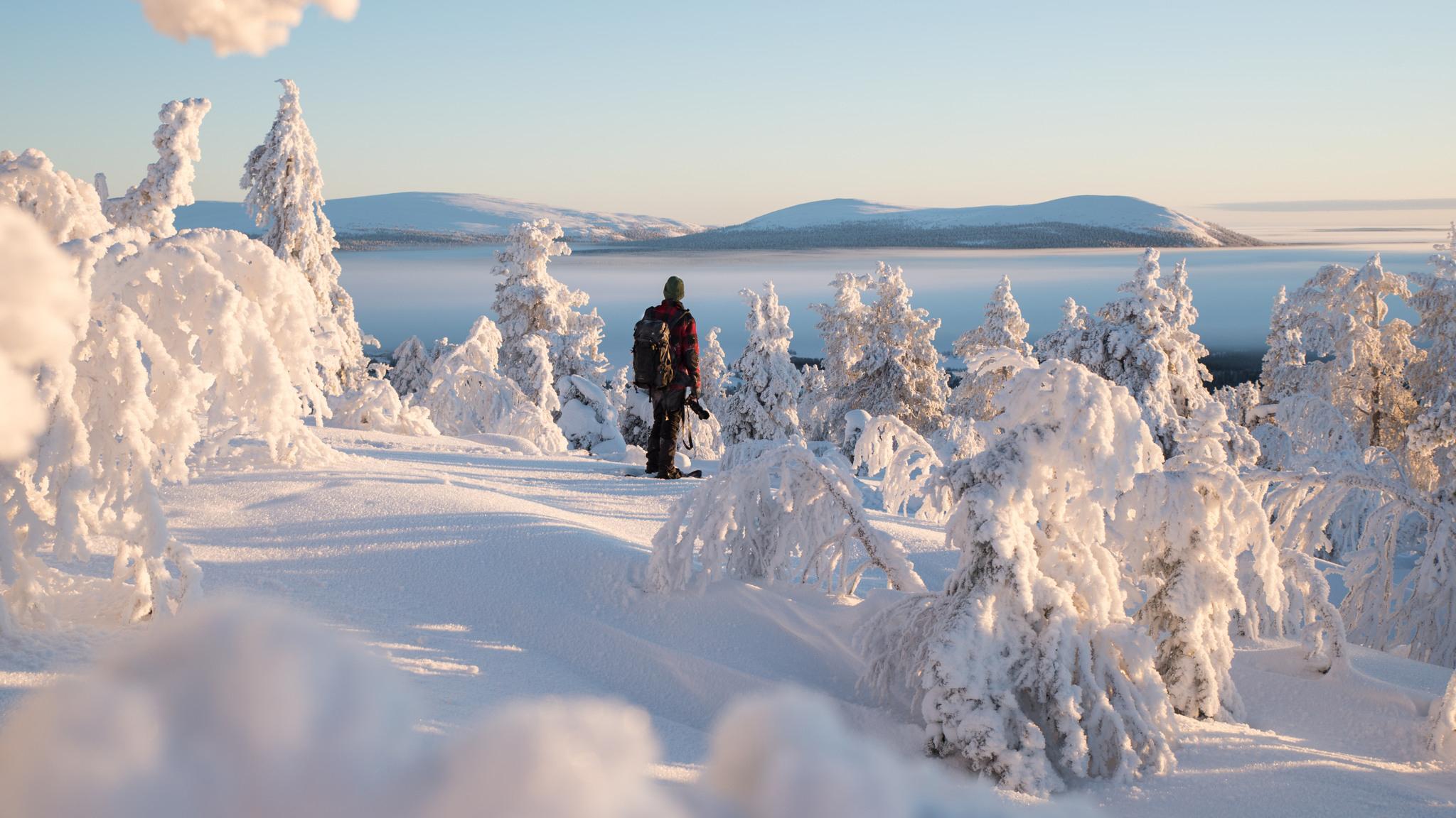 Snowshoeing in Kuertunturi