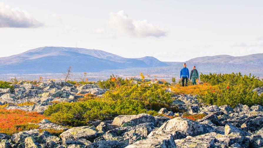 Totovaaran tuntureitti trail in Aakenustunturi