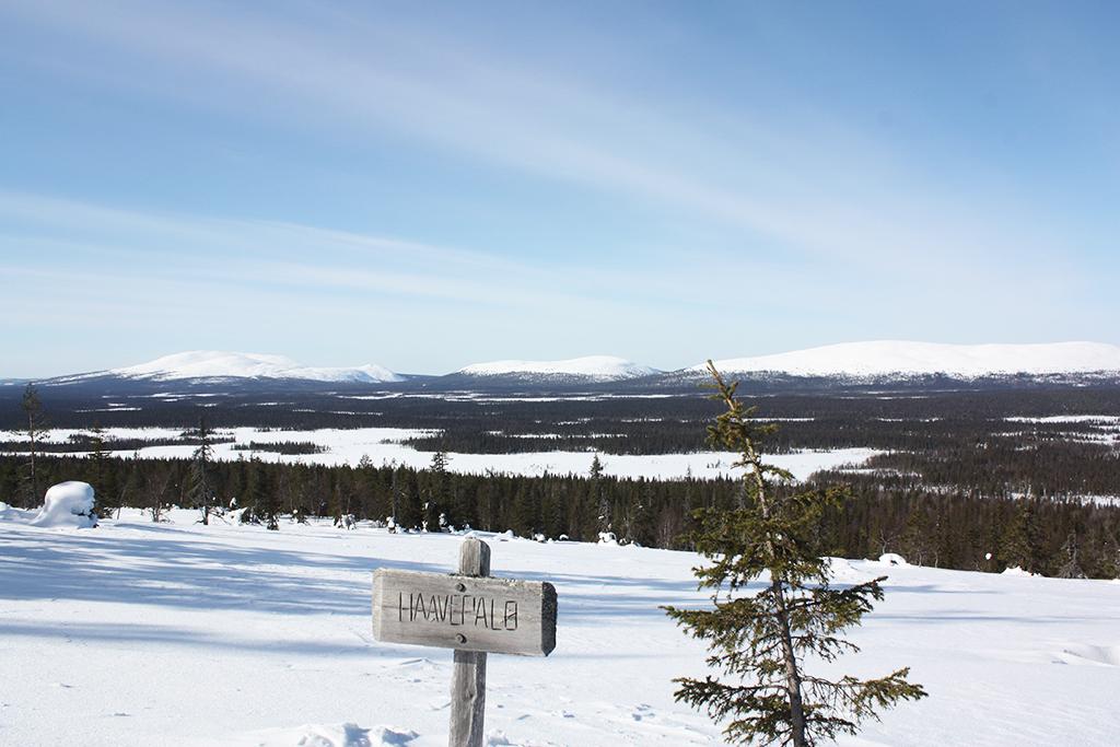 Aakenushiihdossa voit hiihtää Haavepalon näköalapaikalle ihastelemaan maisemia..