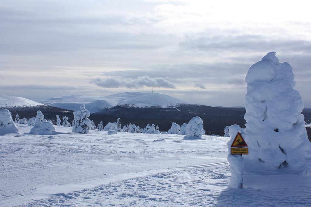 Hiihdä Kukastunturin huipulle katselemaan Pallas-Yllästunturin kansallispuiston maisemmia.