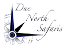 Due North Safaris logo