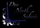 Due North Safaris logo