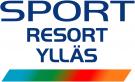 Горные лыжи logo
