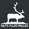 NUTS Ylläs Pallas polkujuoksu logo