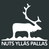 NUTS Ylläs Pallas Trail Run logo